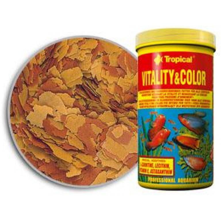 Vitaliti & Color
