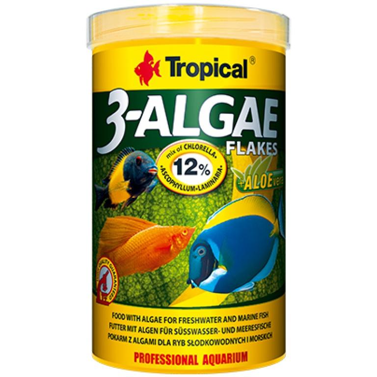 Tropical 3-Algae Listić