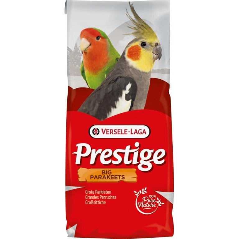 VERSELE LAGA Prestige Big Parakeet-nimfa