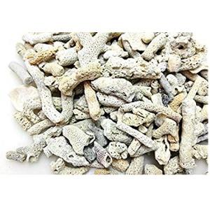 Koral lomljeni beli 1 kg